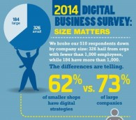 Digital_Business_Survey2014 - Copy